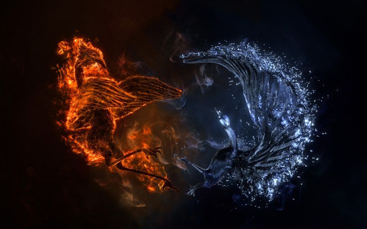 1680x1050 Wallpaper battle, birds, fire, water