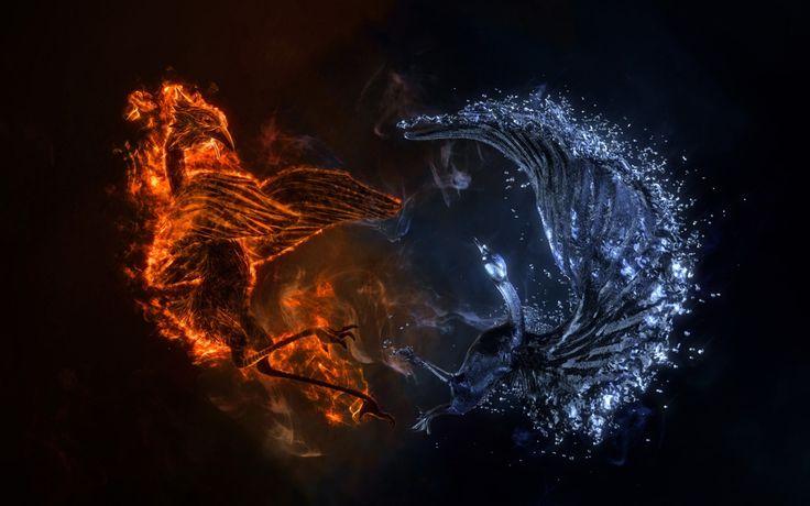 1680x1050 Wallpaper battle, birds, fire, water