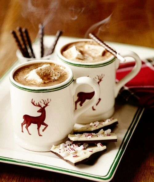Hot Coco and snuggling on a cold winter day = perfect. :)
