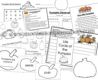128 best preschool pumpkin theme images on Pinterest