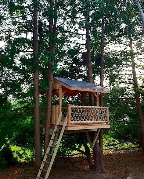 A Perfect Treehouse Design Using 2 Trees Get Plans From Interiors Inside Ideas Interiors design about Everything [magnanprojects.com]