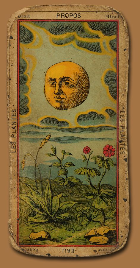 so it's a tarot card...but I love that it has Plantain on it!! If anybody knows the other flower pictured...please share!