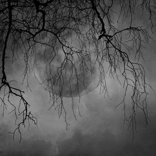 =Sky, Beautiful Moon, Beautiful, Art, Fullmoon, Night Moon, Full Moon, Nighties Night, Moon Shadows