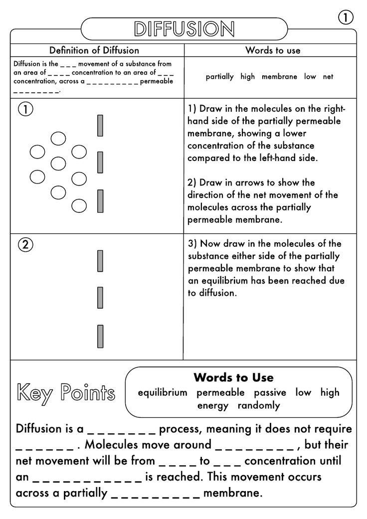 Biological Molecules Worksheet Answers Gcse Biology Diffusion Osmosis And Active Transport In 2020 Biology Worksheet Cell Transport Biology Classroom