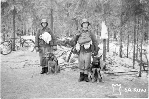 Finnish troops with their dogs