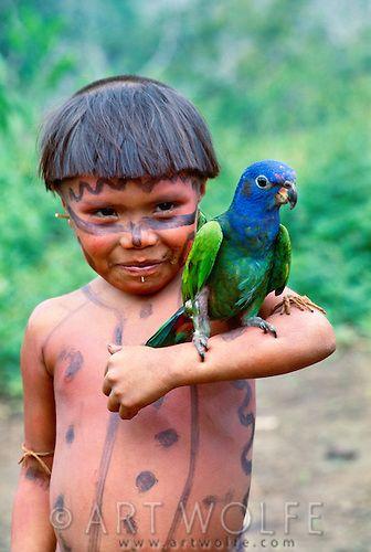 Yanomamo girl . blue-headed parrot . Parima Tapirapeco National Park . Venezuela