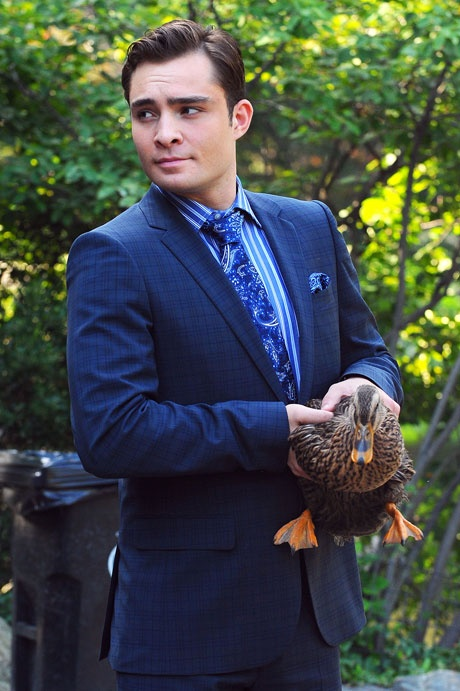 What's cuter than Chuck Bass holding a duck? Oh, right. Nothing. - PacificCoastNews.com