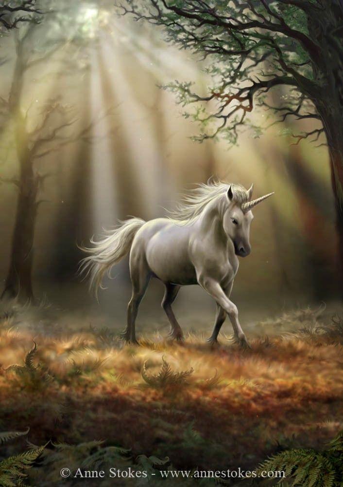 Fae - Anne Stokes - Glimpse of a Unicorn poster