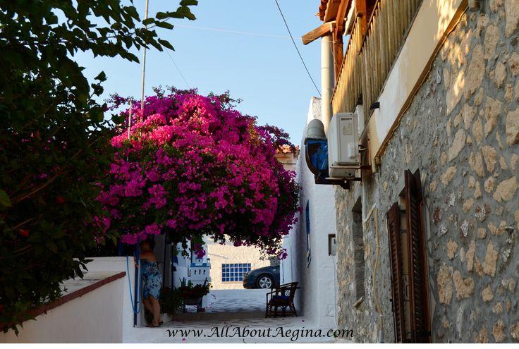 Perdika Village in the island of Aegina, Greece