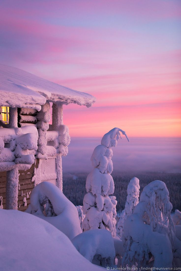 The snow covered trees are amazing at Hotel Iso-Syote - Visiting Finland in Winter: Top 15 Winter Activities in Finland