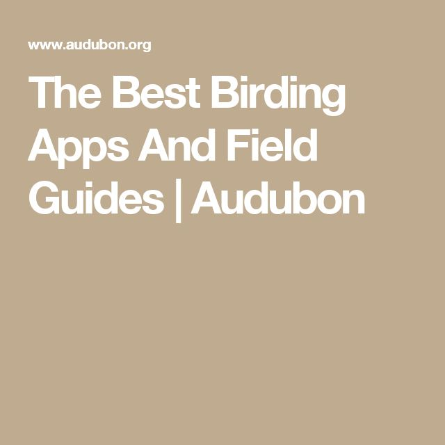 The Best Birding Apps And Field Guides | Audubon