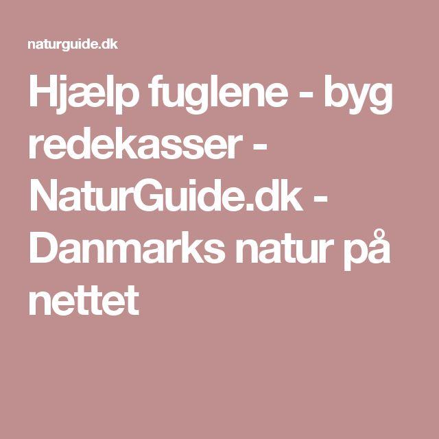 Hjælp fuglene - byg redekasser - NaturGuide.dk - Danmarks natur på nettet
