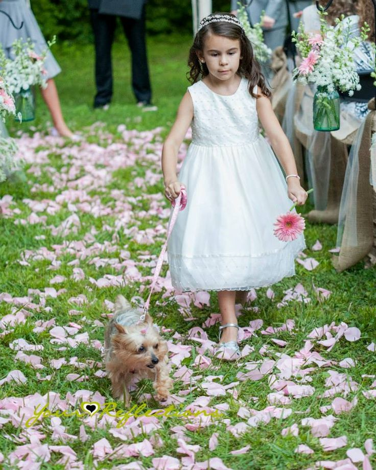 Camo Outdoor Wedding Ideas: Dog Ring Bearer