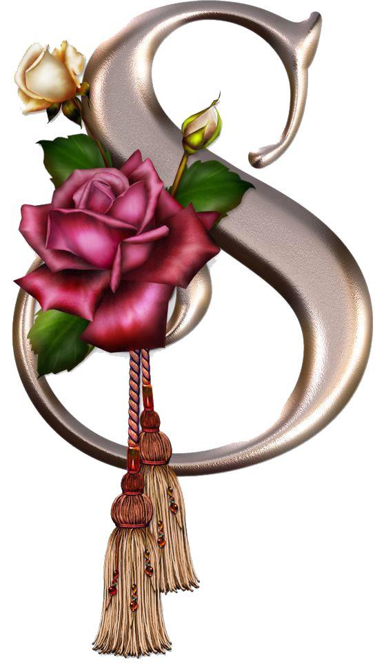 S Alphabet In Rose 97 best rose fo...