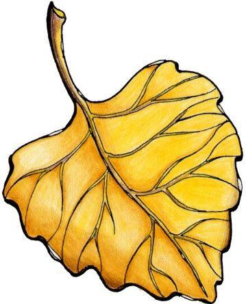 Maestra de Infantil: Hojas de otoño. Dibujos para el árbol de otoño.