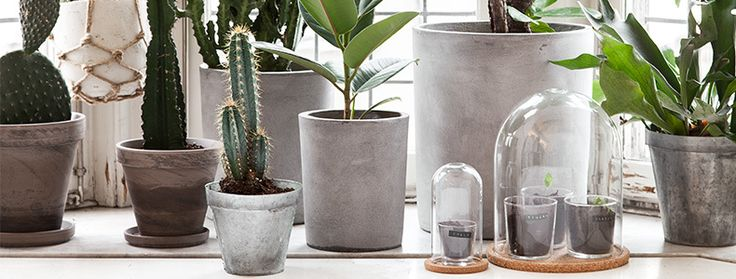 krukor och hinkar concrete stuff pinterest concrete flowers and interiors. Black Bedroom Furniture Sets. Home Design Ideas