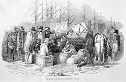 Les gens sont partis de leur pays à cause de la pauvreté dans les campagnes.La ville de Québec est le port d'entré de 11 500 immigrants.
