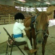 Therapeutic Horseback Riding  Equine Therapy is Now Used to Treat a Wide Range of Disabilities
