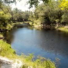 Stephen Foster Folk Culture Center State Park- Suwannee River catfish hole trail view