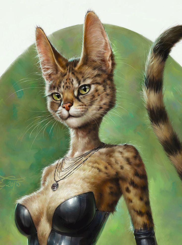 folle du cul chat sexy com