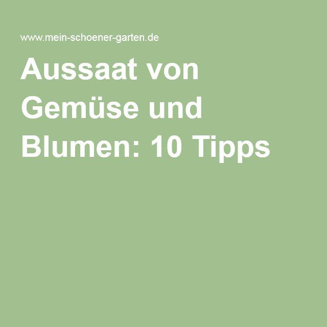 Aussaat von Gemüse und Blumen: 10 Tipps