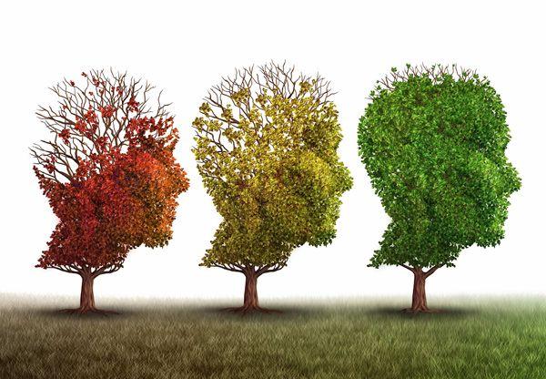 4 sätt att motverka stress
