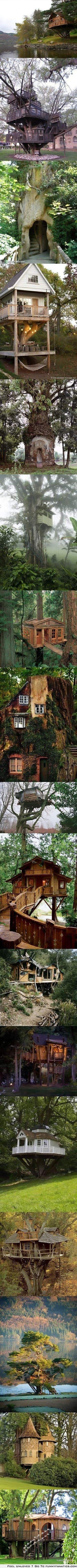 Amazing tree houses.  Even as an adult they look like so much fun!!!