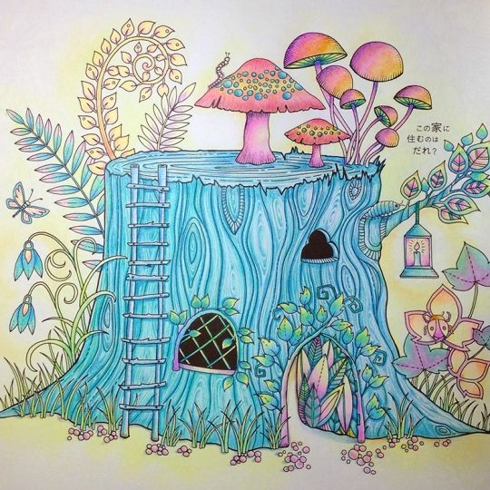 34 Best Mushrooms Images On Pinterest