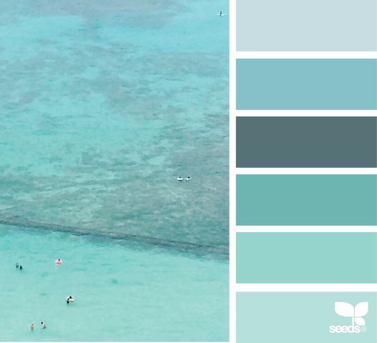 amazing waikiki blues color with sponge painting color schemes