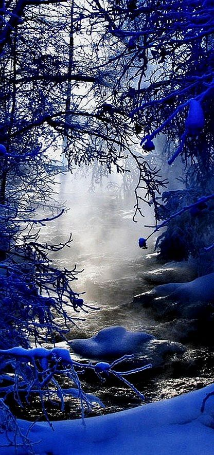 Misty Creek - #Winter