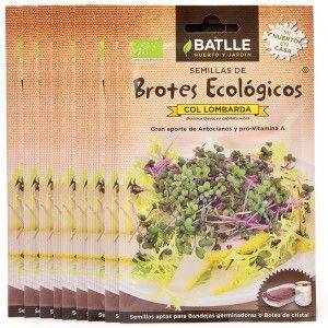 Semillas de col lombarda para germinar - Loveat!© - #We_Loveat - Semillas para germinar.Pack de 10 sobres. #We_Loveat