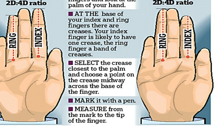 What the length of your index finger says about you. For many decades now, scientists have noticed an extraordinary link between the ratio of two digits on the hand and a whole host of seemingly unrelated traits.
