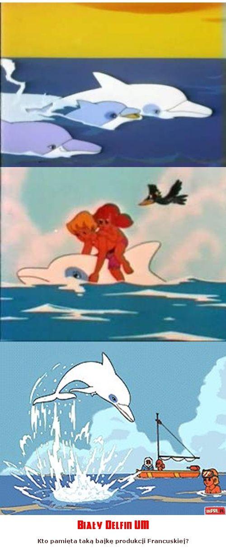 Bialy Delfin Um