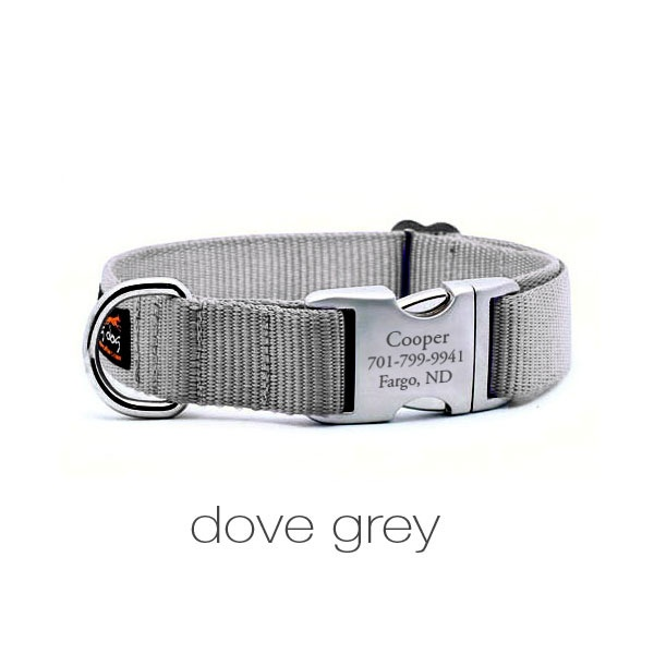 Flying Dog Collars. Love the personalized buckles, instead of those ...