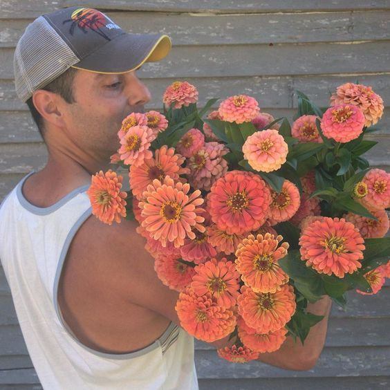 Growers of beauty:meet flower farmer Antonio Valente on periwinkleflowers.blogspot.com