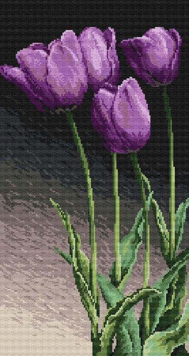 Fialové tulipány - B. Sikora-Malyjurek