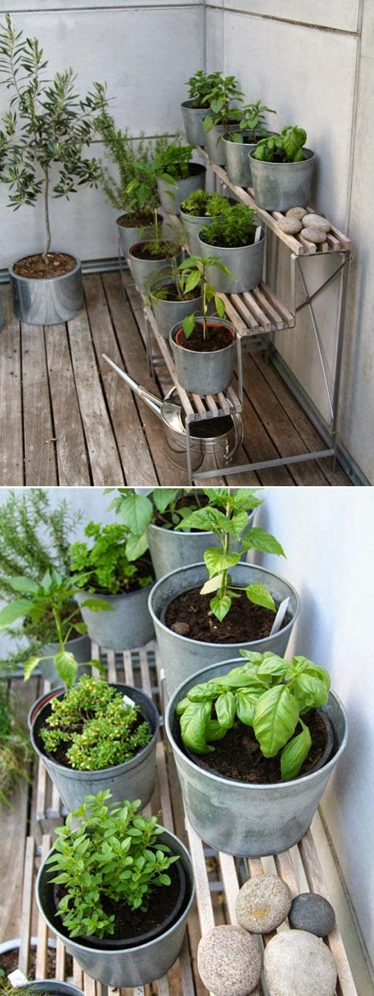 DIY HERB GARDEN..you can also buy benches and sit on concrete blocks to make different heights :)
