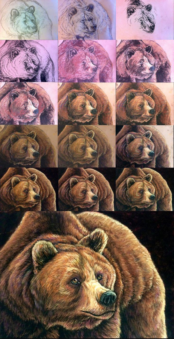 Walktrough soft pastels - bear portrait by Bisanti on DeviantArt