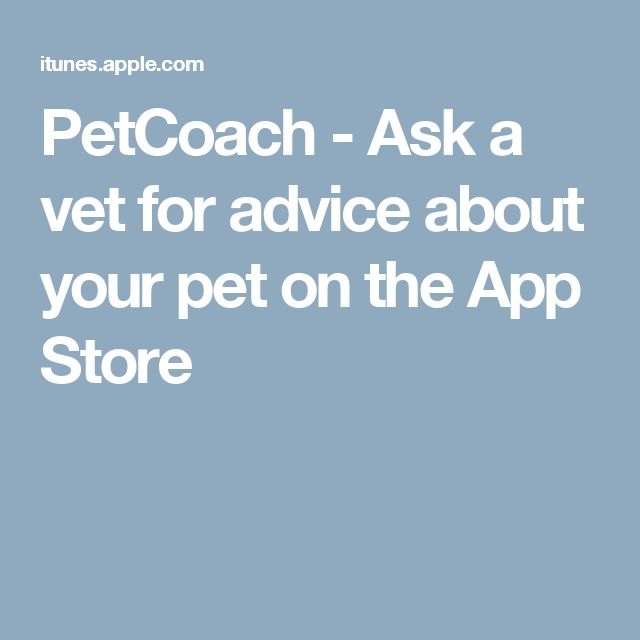 PetCoach - Ask a vet for advice about your pet on the App Store