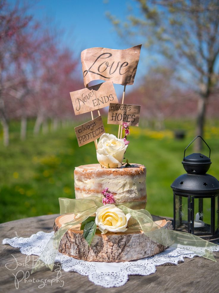 Beautiful Rustic Naked Wedding Cake in a pink blossom orchard. Niagara Orchard Wedding with wedding cake on wooden cake stand @orchardcroft @constellationev @niunia1977 @WarehouseNOTL @pambocb #JoshBellinghamPhotography