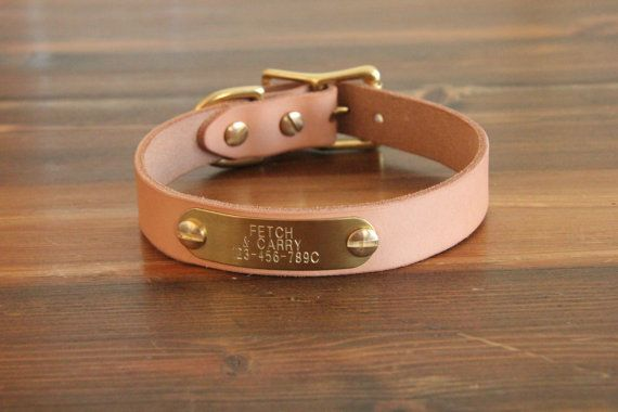 Classic Leather Dog collar with brass nameplate by FetchAndCarry