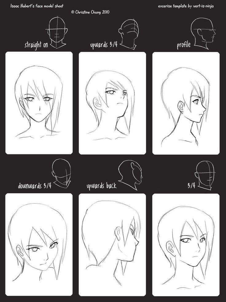 Template By Link Angel Model Sheet Face