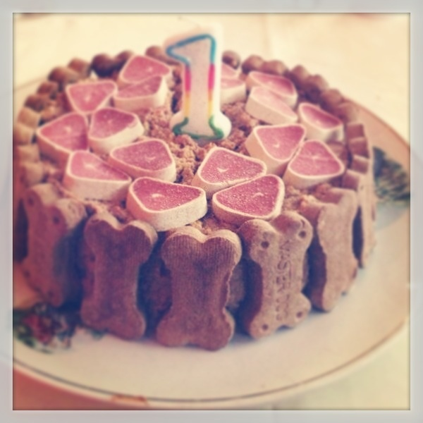 9 Best Cakes For Dogs Images On Pinterest Dog Biscuits Dog Cakes