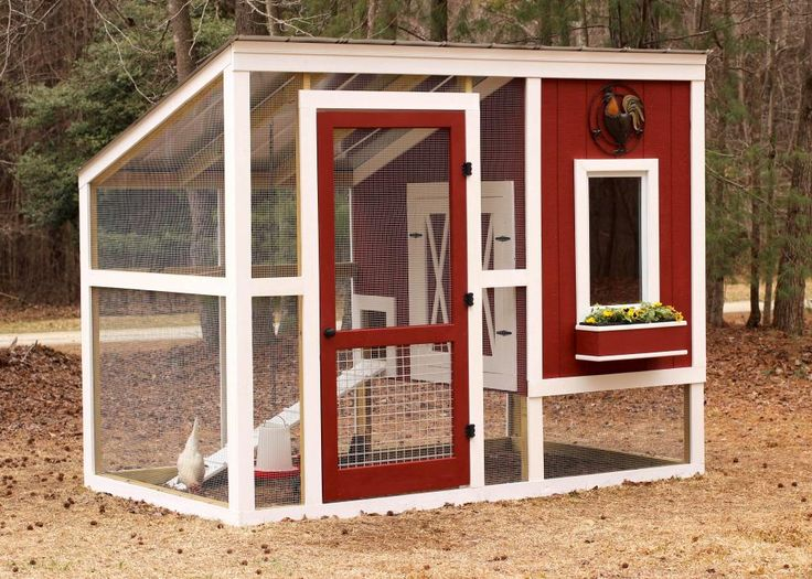 Construct A Beautiful And Efficient Backyard Coop To Suit