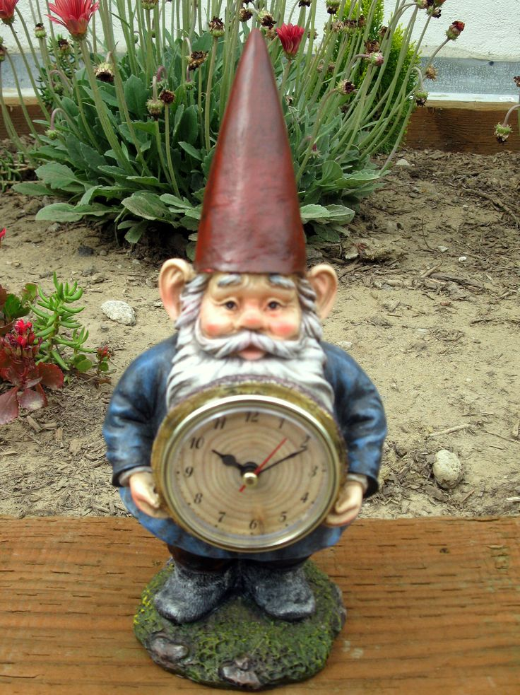 Gnome In Garden: 163 Best Images About Gnome Memes: Funny Gnomes On