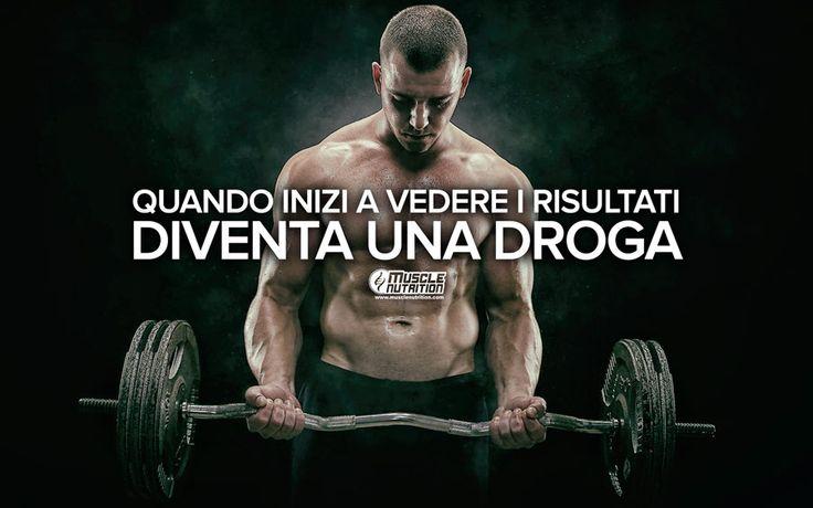 www.MuscleNutrition.com - L'e-store più fornito d'Europa, migliaia di prodotti a prezzi scontatissimi, in 24 ore a casa tua, anche in contrassegno.