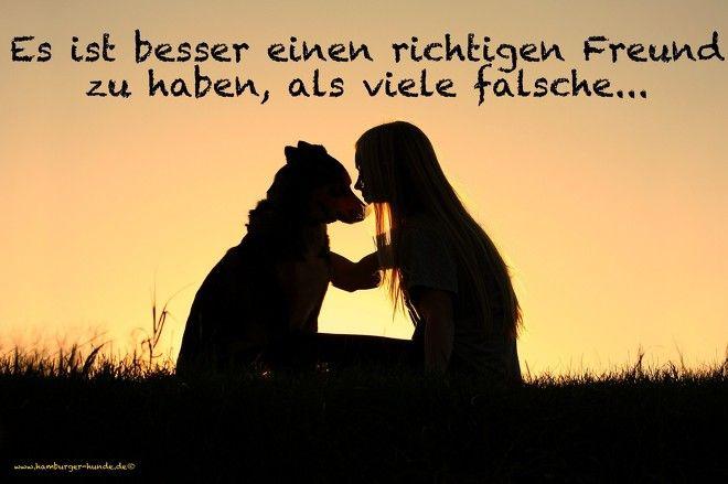 Es ist besser einen richtigen Freund zu haben, als viele falsche...