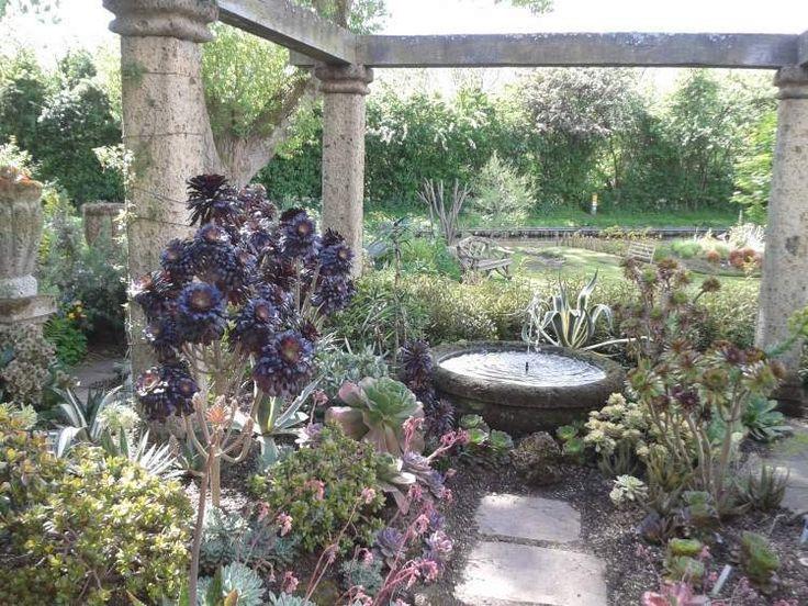 Les 25 meilleures id es de la cat gorie jardin sec sur for Idee amenagement jardin mediterraneen
