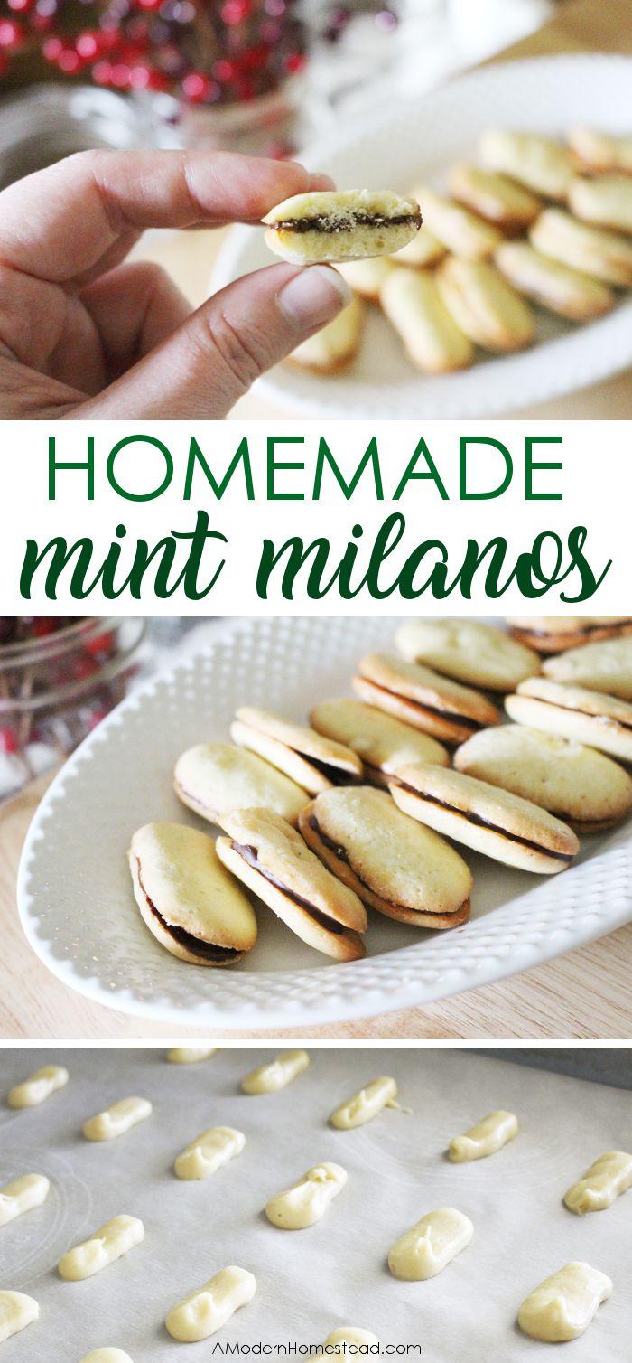 Homemade Mint Milano Cookies