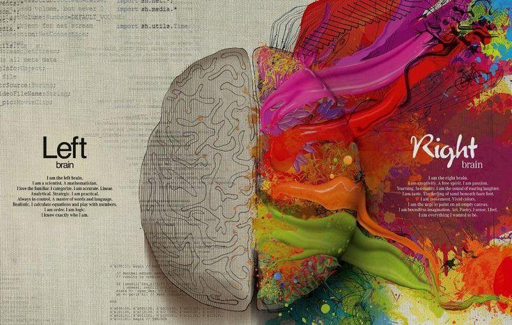 """PAS... il cervello emotivo delle """"persone altamente sensibili"""""""